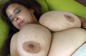 Fat pussy galleries